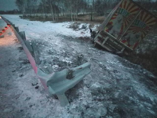 Сдороги под Челябинском вылетел фургон с22 дрессированными животными— Цирк уехал