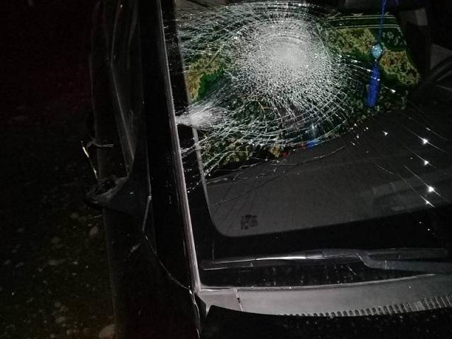 В Челябинской области молодой мужчина погиб под колесами иномарки в ночном ДТП