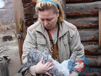Чупакабра в Троицке: неизвестный зверь открыл клетки и высосал кровь из 19 кроликов