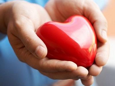 К Новому году южноуральцам предлагают обзавестись кровными родственниками