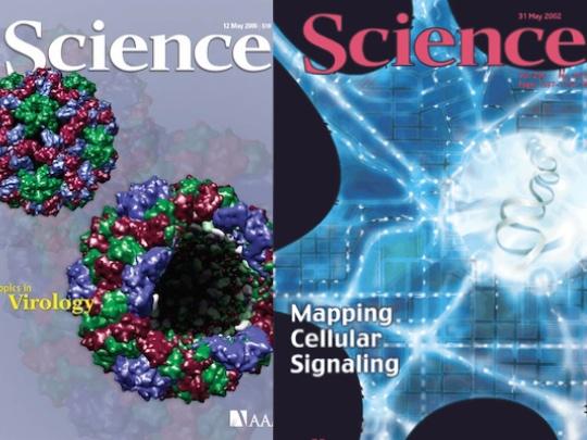 Учёные ЧелГУ стали соавторами статьи о метеорите в журнале Science