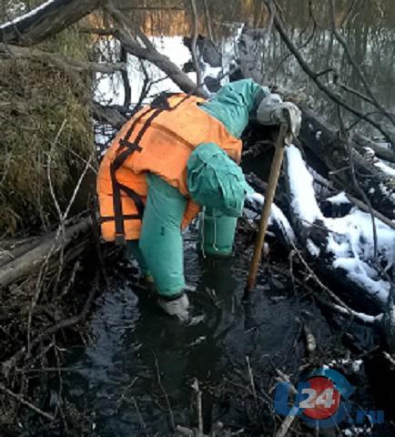 Вслед за ногой в реке Миасс обнаружили череп и кости
