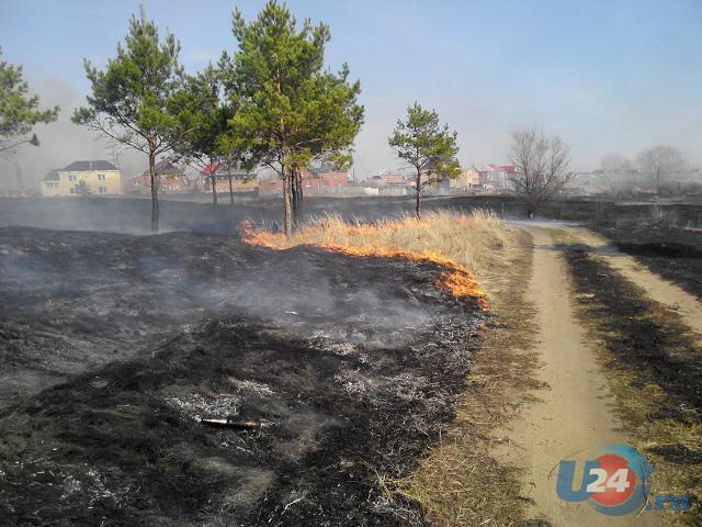 Троицк в огне: круглые сутки пожарные тушат траву