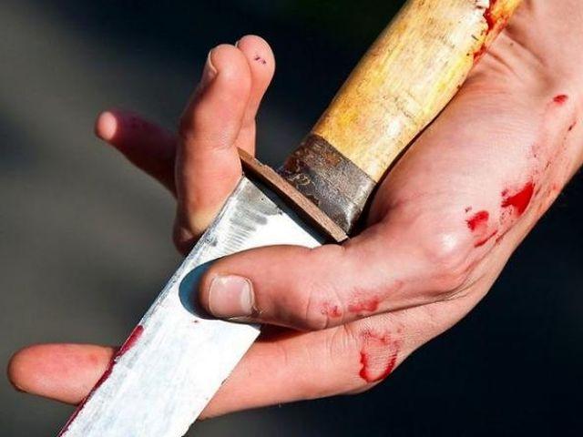 проще говоря, ударил ножом легкое телесное повреждение владыка?