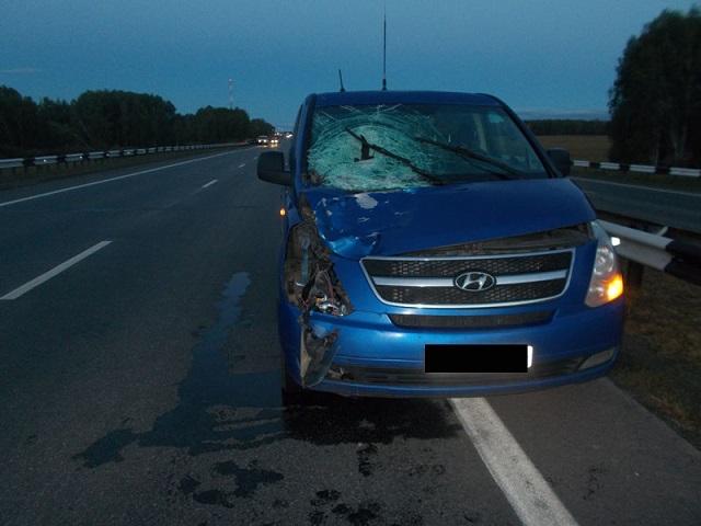 НаМ5 иностранная машина насмерть сбила шедшего среди дороги мужчину