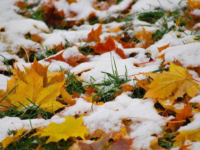 До8 сантиметров снега выпало вЧелябинской области кутру воскресенья