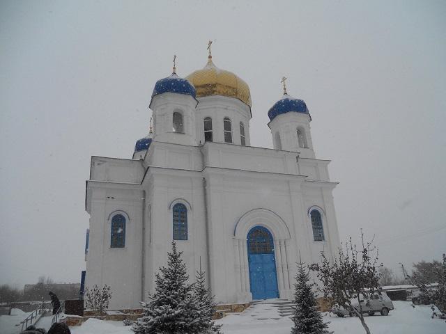 В Свято-Казанском женском монастыре в Троицке в декабре распустилась верба