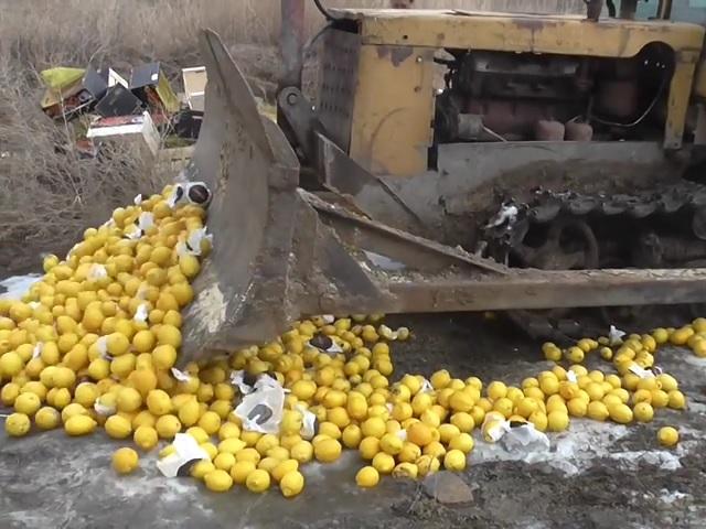 НаЮжном Урале уничтожили 800кг санкционных лимонов