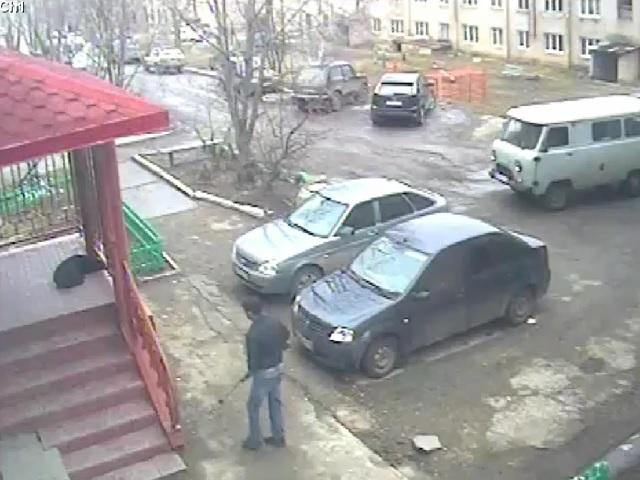 ВЗлатоусте Челябинской области мужчина убил собаку наглазах удетей