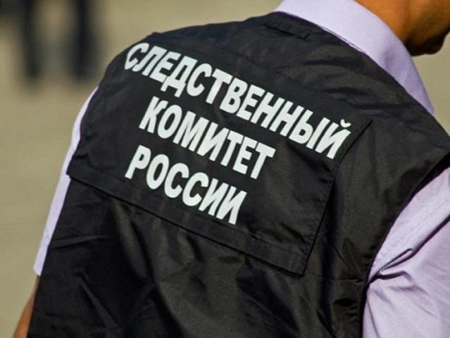 ВЧелябинской области разыскивается насильник девятилетней девушки