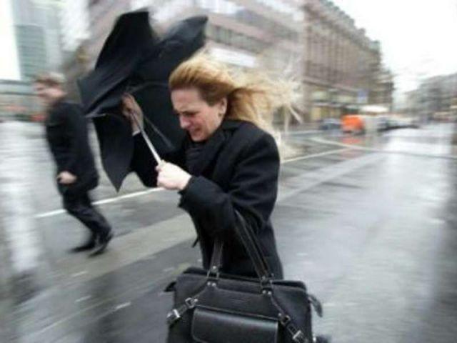 В российской столице назвали число поврежденных стихией домов иавто