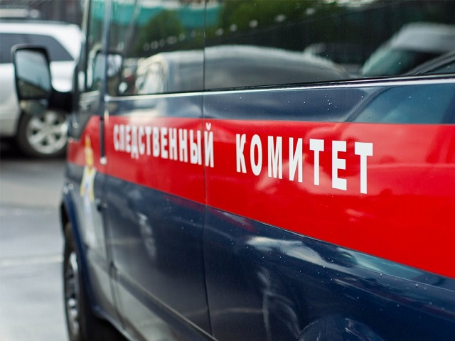 ВЧелябинске новорожденную девочку выкинули вмусорный бак