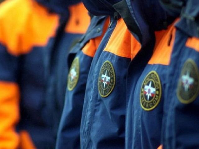 83-летнюю истощенную женщину нашли в Еткульском лесу