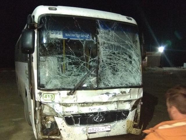 НаЮжном Урале рейсовый автобус сбил лошадь