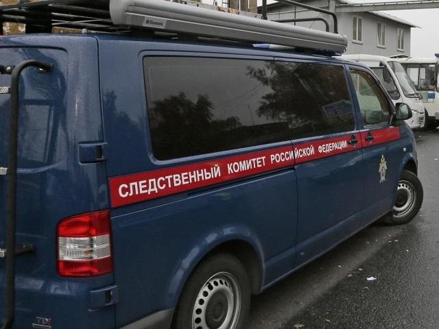 5-летняя девочка загадочно скончалась вАргаяшском районе