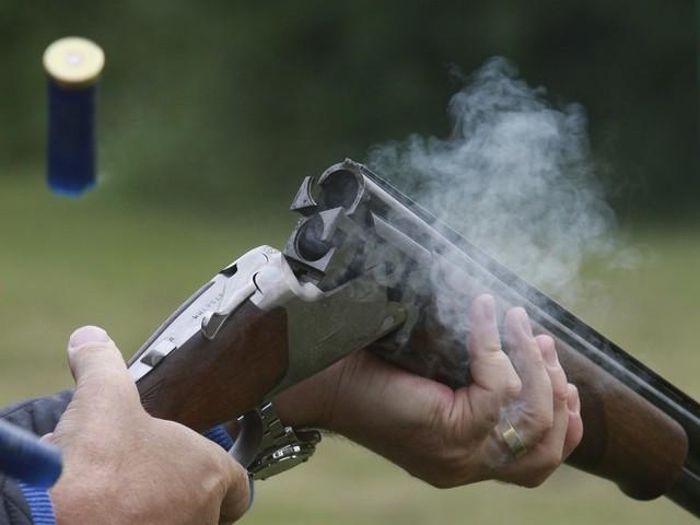 Стрелявшему водворе дома челябинцу угрожает до4 лет лишения свободы