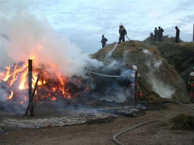 Житель Копейска отправится в колонию за поджог сена из мести