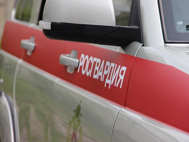 В Челябинске задержали молодую «закладчицу» на BMW
