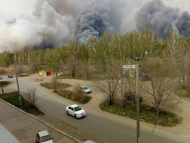 В Троицке возле ГРЭС загорелся сосновый бор