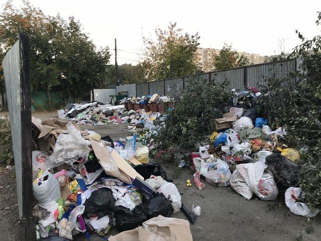 Прокуратура требует возбудить уголовное дело из-за мусора в Челябинске