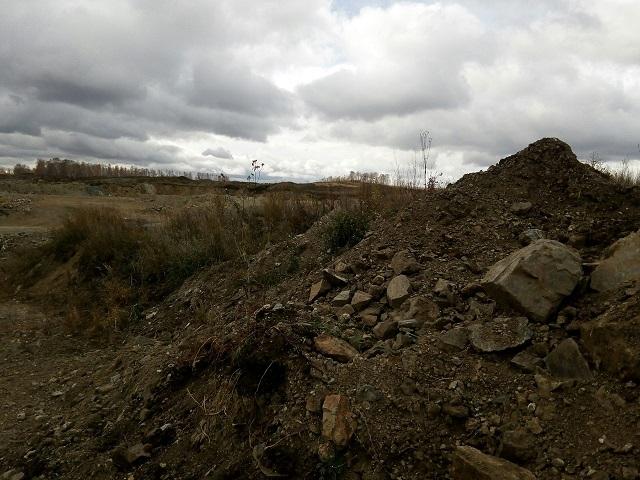 Чебаркульцы против размещения мусорного полигона в курортной зоне