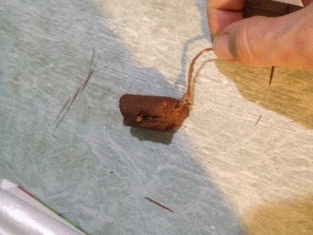 В Челябинской области покупатель обнаружил в конфетах неожиданную «начинку»