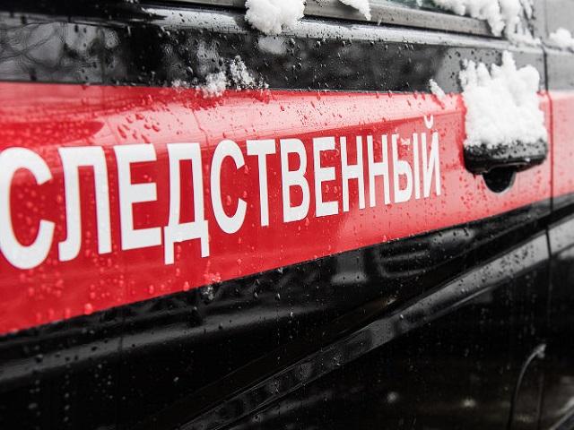 Тела двоих детей обнаружены в частном доме в Челябинской области