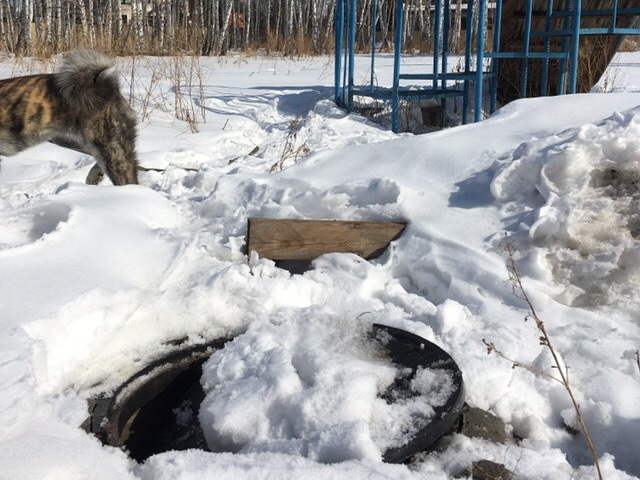 В Челябинске ребенок провалился в заметенный снегом колодец