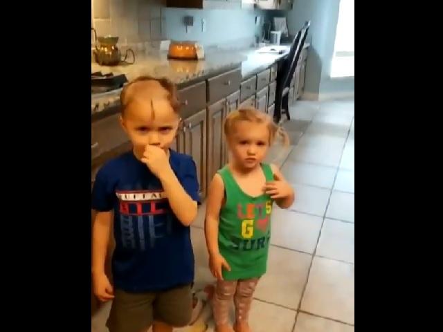 Видео дня: что будет, если плохо спрятать в доме машинку для стрижки волос
