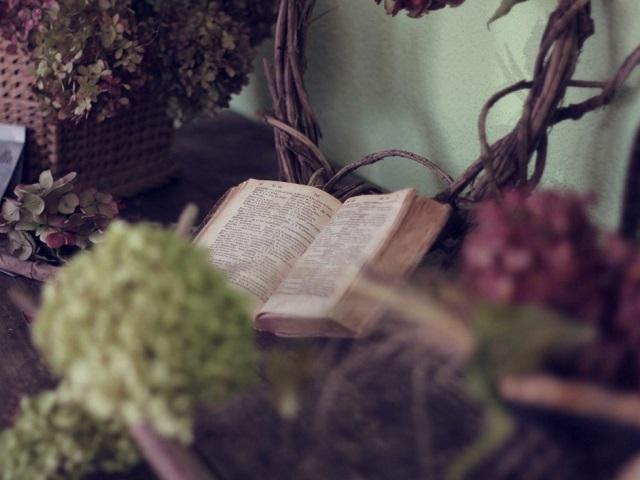 Пулитцеровская премия по литературе: 43 книги, переведенные на русский язык