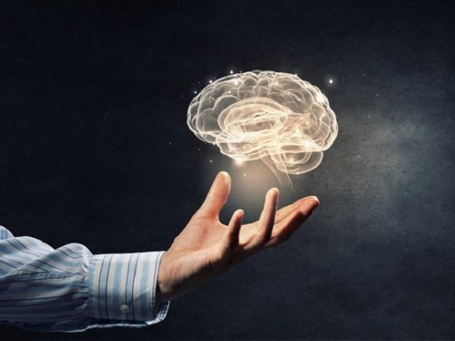 На что способен и как работает: интересные факты и истории о человеческом мозге