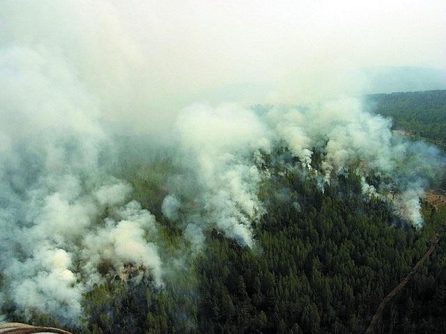 Медик рассказал о главной опасности смога