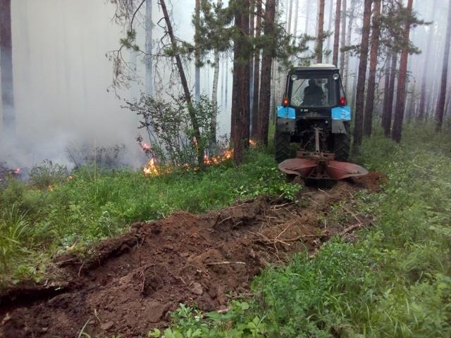 Чебаркульская прокуратура выясняет причины аномальных пожаров в особо охраняемом лесу