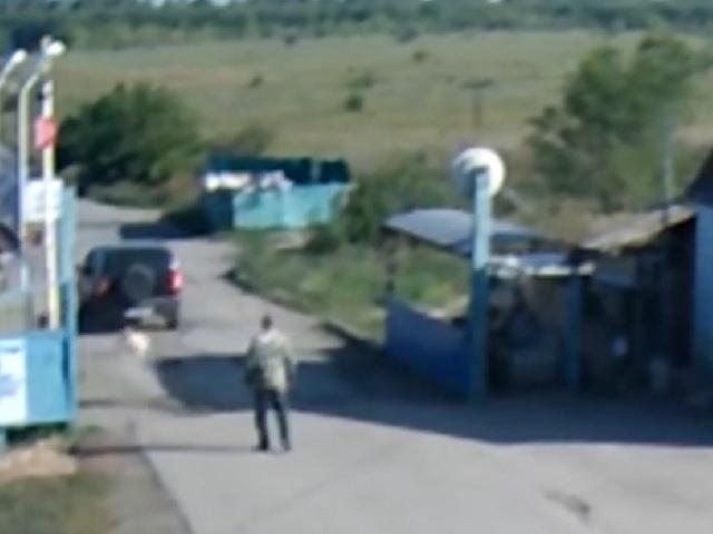 Полиция задержала живодёра, убившего пса на глазах людей в Челябинской области