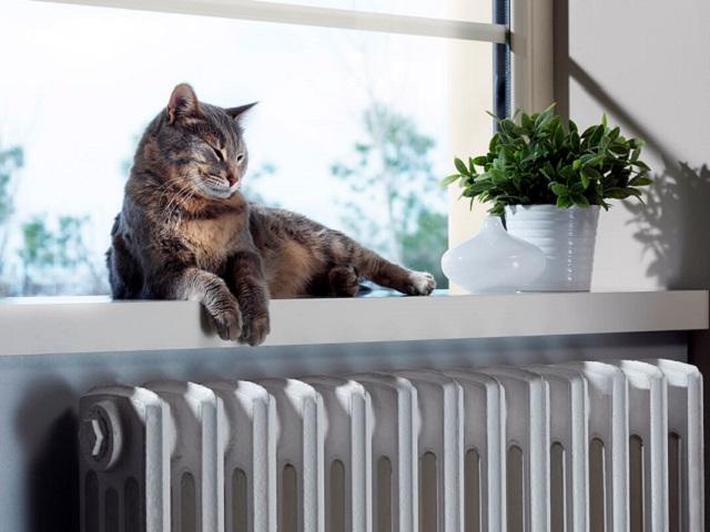 Названа оптимальная для здоровья температура в доме