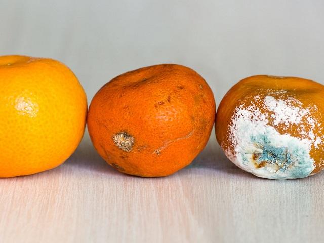 Специалисты рассказали, чем опасно употребление подпорченных фруктов