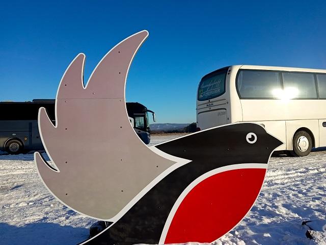 Пассажиры мультимодального маршрута «Снегирь» получат памятные подарки