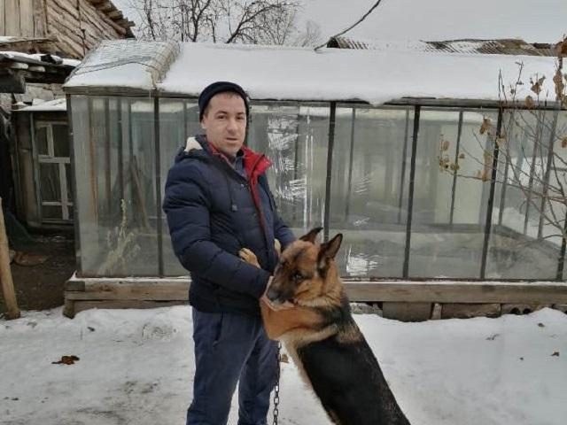 Южноуральские полицейские вернули владельцу похищенную овчарку