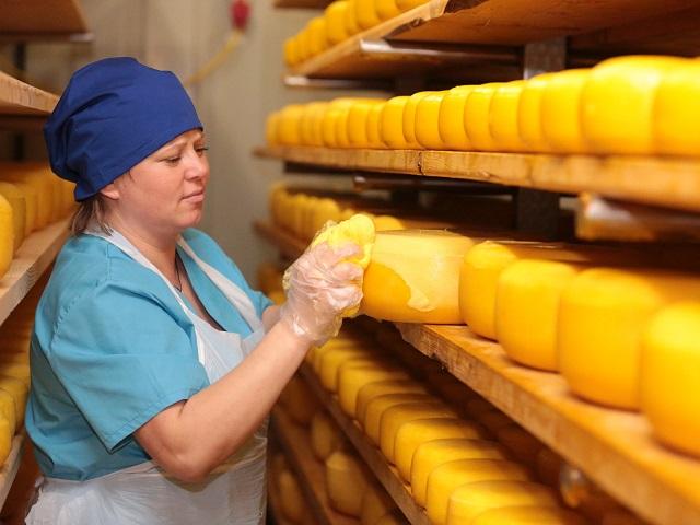 В Челябинской области делали сыр из просроченного молока