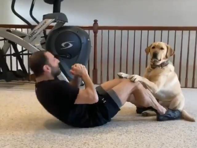 Вместе веселее: обожающий тренировки пёс стал героем сверхпопулярного видео