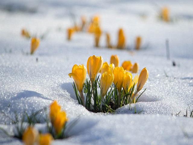 Прогноз погоды в Челябинской области на среду, 25 марта