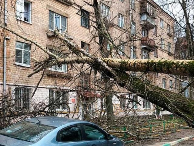 Срочное предупреждение МЧС: на Челябинскую область надвигается ураганный ветер