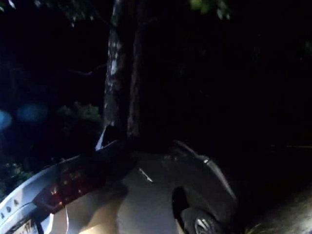 Под Миассом погиб водитель «Лады», столкнувшейся с деревом