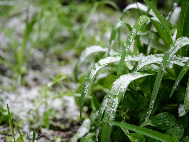 Гидрометцентр предупредил о температурных аномалиях на Урале до конца июня