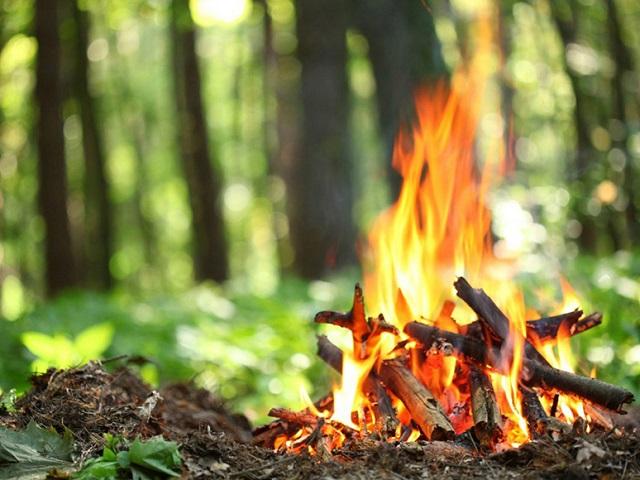 В Миассе отменили особый противопожарный режим