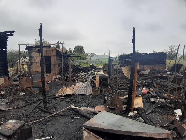 В Челябинской области после удара молнии сгорели домашние животные