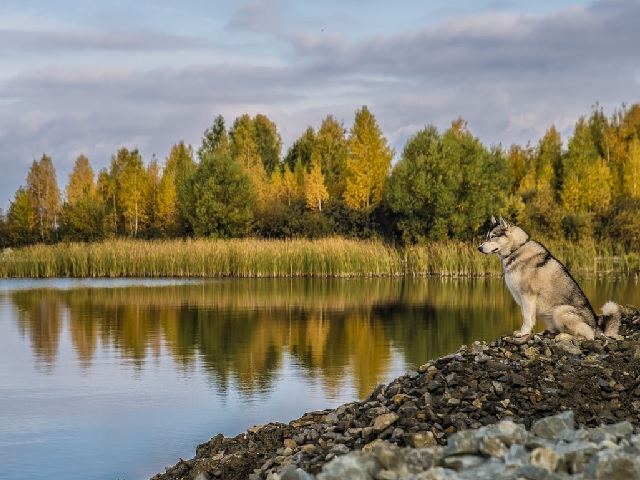 Прогноз погоды в Челябинской области на вторник, 1 сентября
