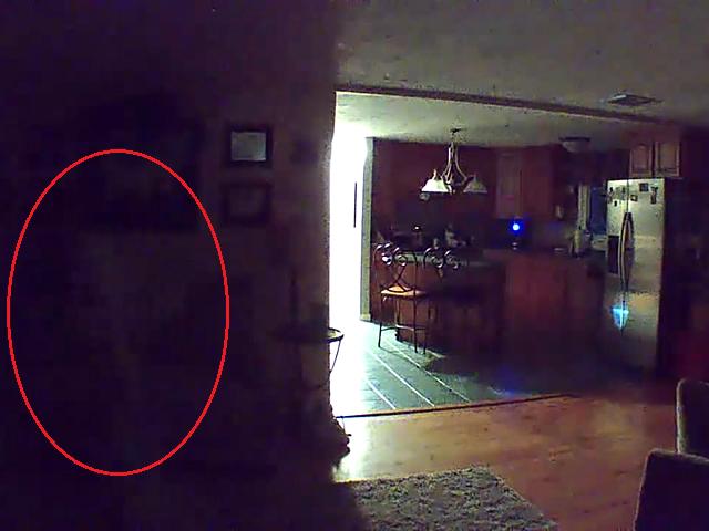 Жуткое человекоподобное существо на записи из пустого дома напугало пользователей