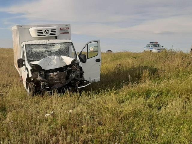 На Южном Урале водитель «ГАЗели» насмерть сбил мужчину, осматривавшего свой автомобиль