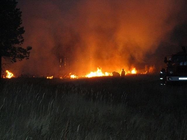 Более ста спасателей тушат крупный лесной пожар в Челябинской области
